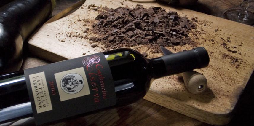 Carboncine Riserva 2008 Castello Carboncine DOC Piave